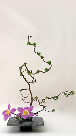 Ikebana unterricht in m nster die japanische for Japanische blumenkunst